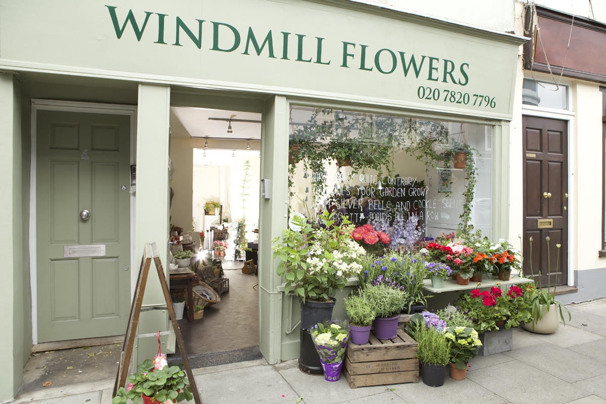 Windmill Flowers In Kennington London